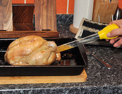 in_use_turkey_baster